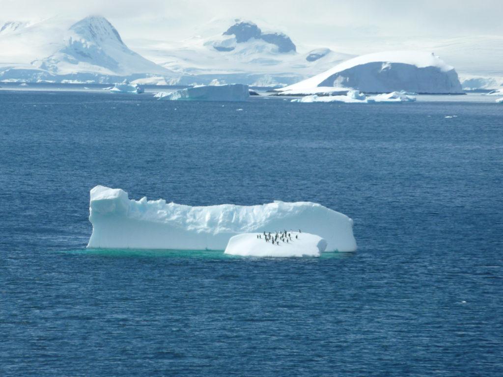 Antartica Travel